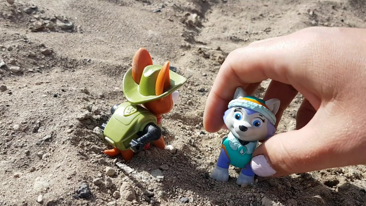 paw patrol pups tracker and everest visit the volcano