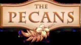 The Pecans in Queen Creek, AZ