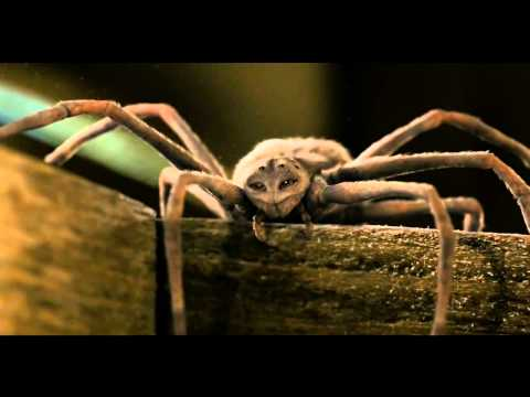 """'Charlotte's Web' (HD) -- scene """"Charlotte's Mortality""""  / Death"""