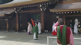 Traditional Japanese wedding. Experience