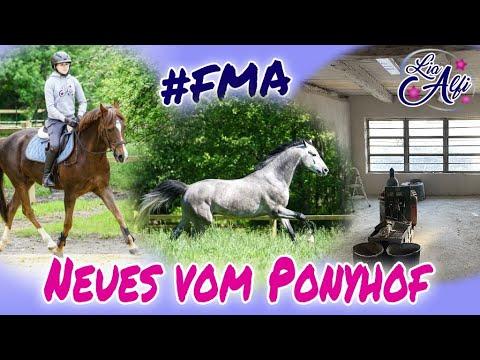 Lia & Alfi - Neues vom Ponyhof - FMA