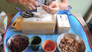 More Mail   New Orchids and seeds   Part 1   Unboxing
