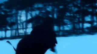 I follow rivers -Lykke Li (official) HD720P DIVX [AmiTy HILL uploads]