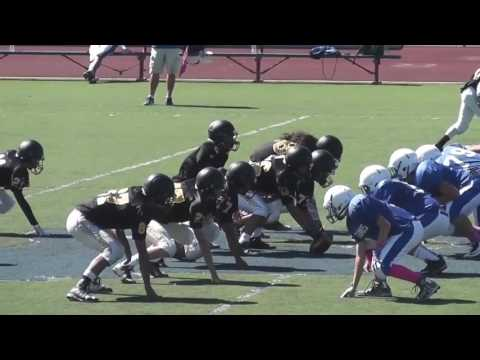 Santos Sanchez Freshmen Highlights