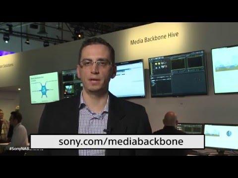 Media Backbone Hive