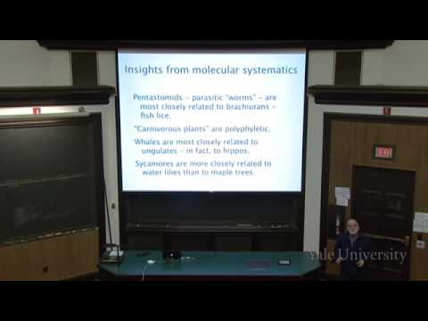 15. Phylogeny and Systematics