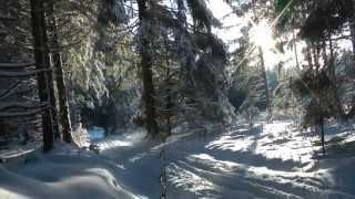 Eifelwinter 2012 (Langlauf in Hollerath)