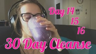 Day 14, 15 & 16 | 30 Day Cleanse