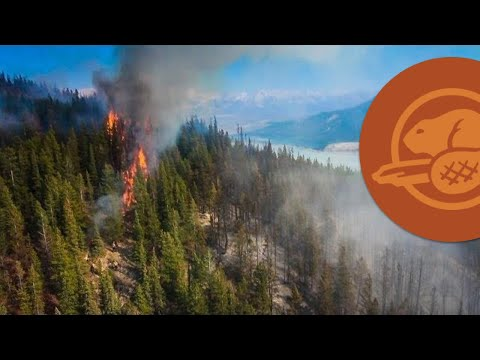 Fire in Jasper National Park