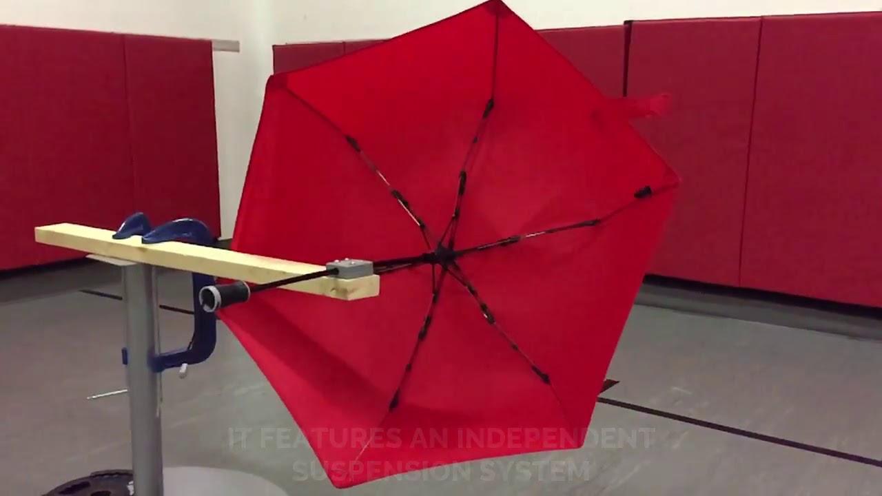 00163bd5c Hedgehog's Carbon Is Your Forever Umbrella