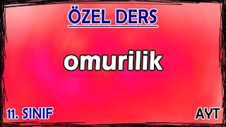 5) İnsanda Sinir Sistemi - Omurilik - Özel Ders (11. Sınıf)