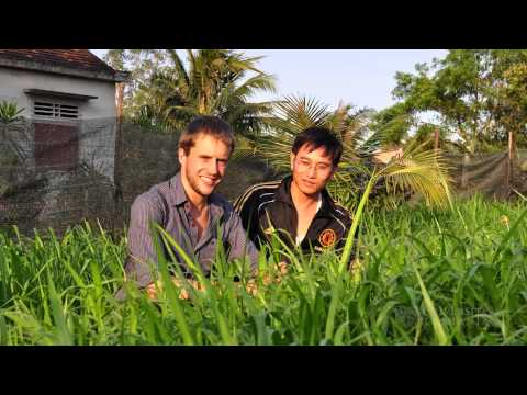 Study Agriculture at the University of Tasmania