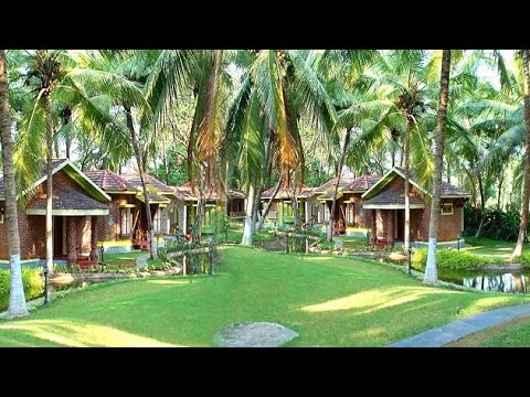 Escape from the Delhi smog to the dreamy ayurvedic vacation in Kerala