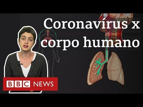 Coronavírus: O que