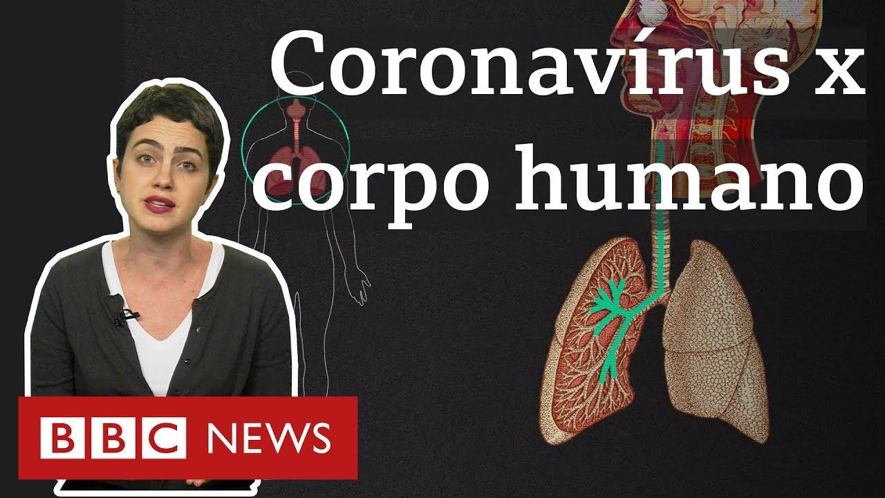 Coronavírus: O que a covid-19 faz com o seu corpo