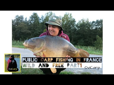 Public Carp Fishing In France - Wild And Free Part 1