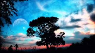 CJ Stone_Fallen Star [ Lavkastor Vocal Remix ]