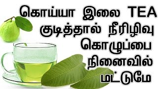 Health Benifits of Guava Leafs In Tamil