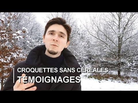 Croquettes Sans Céréales Avis Et TÉMOIGNAGES Catastrophiques #4