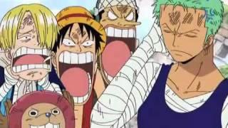 One Piece -Zoro baka marimo-