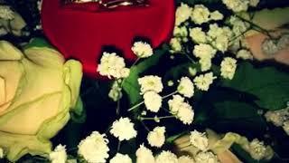3годовщина свадьбы#12лет вместе