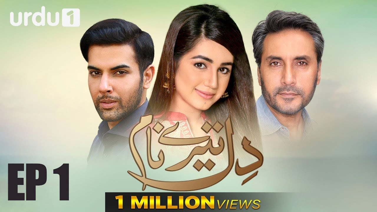 Dil Tere Naam - Urdu 1