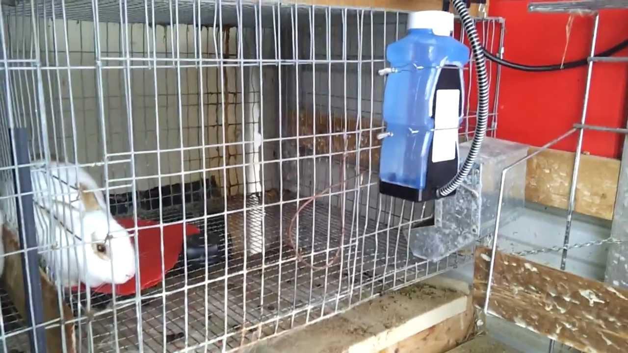 Good Rabbit Water Heaters Youtube