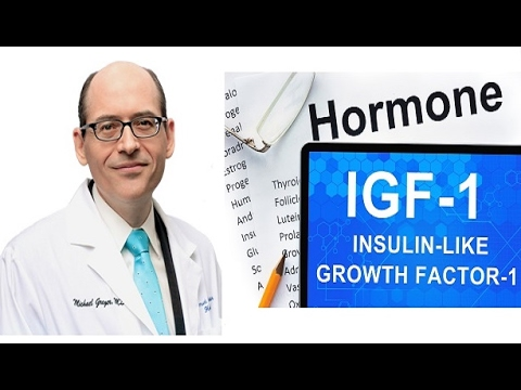 How Diet can Help Fight the effects of IGF1 on Cancer
