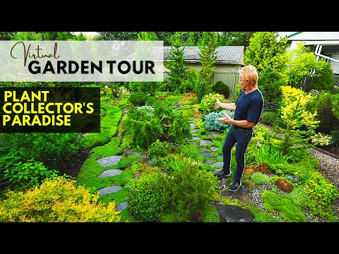 Virtual Garden Tour: A Collector's Paradise | Alberta Tours