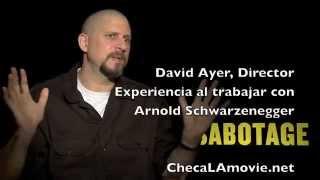 David Ayer, director de Sabotage, nueva película de Arnold Schwarzenegger.