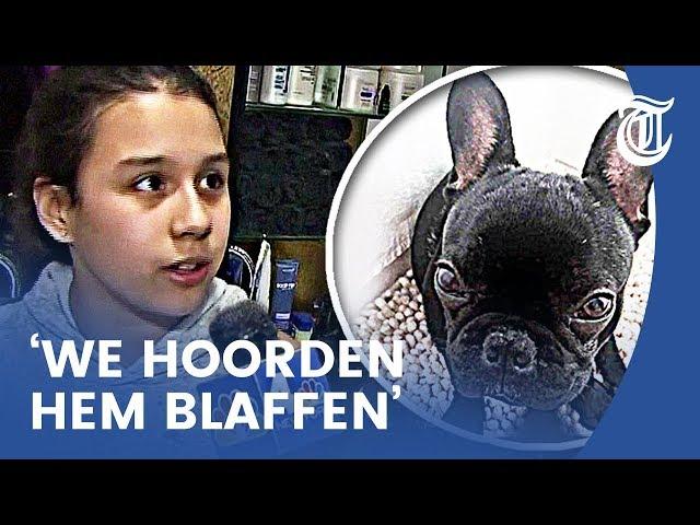 Stewardess vermoordt puppy in bagagevak