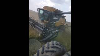 Arkansas Rice harvest 2016