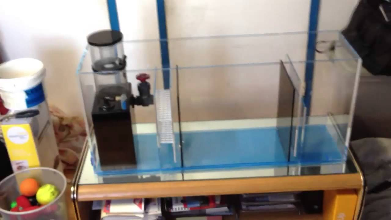 diy sump refugium part 2 customer 1 youtube
