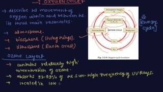 the oxygen cycle and ozone layer   class 9 biology natural resources