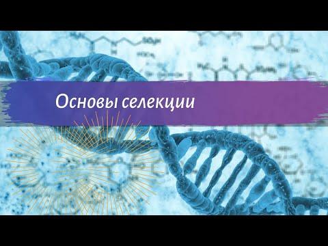 Биология 9 класс Пасечник $25 Основы селекции