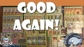 Donphan is a Good Pokemon Deck in Expanded Again!