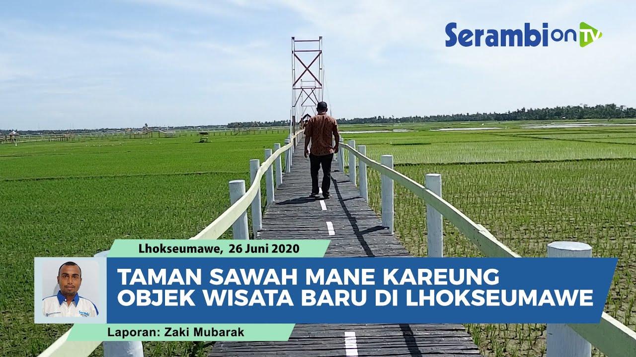 12+ Taman Sawah Mane Kareung, Objek Wisata Baru di Lhokseumawe