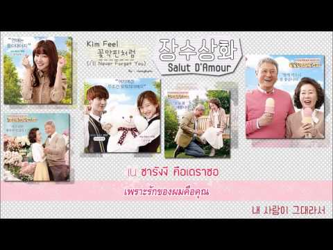 Kim Feel - I'll Never Forget You (Karaoke, THAI Sub)