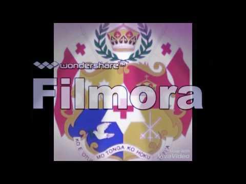 POLICE SIREN SONG(REMIX DJ Fle