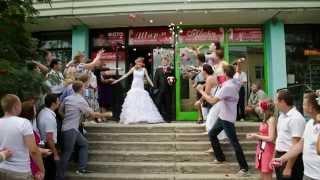 Свадьба Алексея и Юлии