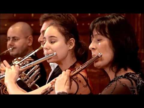 Concert with the Budapest Symphony Orchestra
