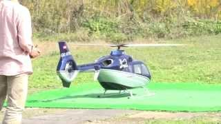 Vario 2.5m EC135 PHT5 from Japan. Pilot by Kato