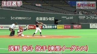 【注目選手】浅野 愛斗 投手(東聖イーグルス)