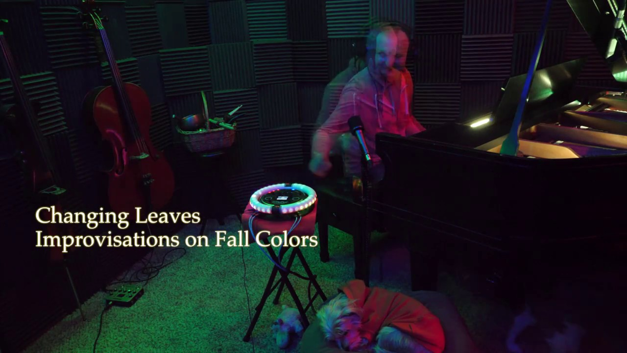Changing Leaves - TuneSelectGo Highlights 20171108