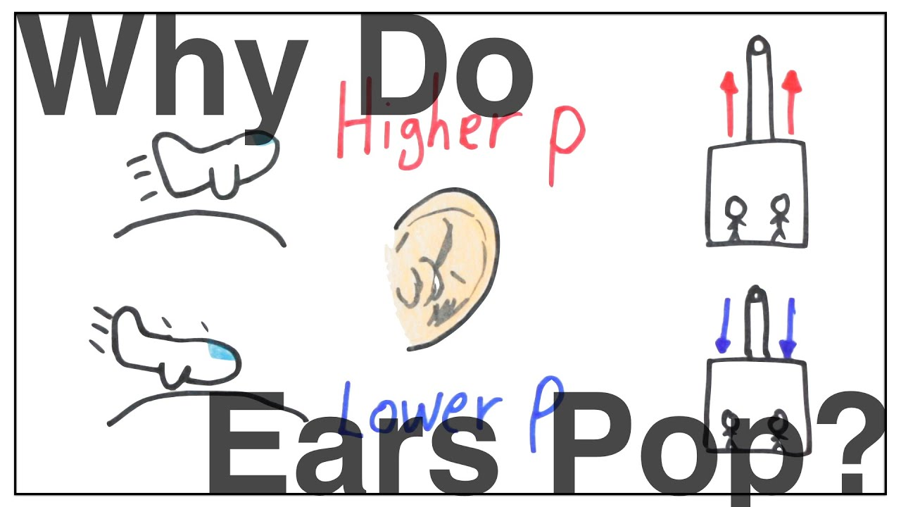 Why Do Our Ears Pop Youtube