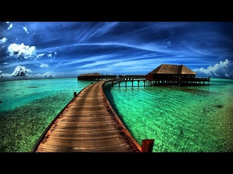 Smooth Jazz & Blues ─ Très Douces Et Relaxantes Musiques d'Ambiance ─  Rêverie Hawaï Piano Bar 🎧 3H