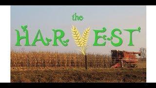 Sermon 06/03/18:  The Harvest - Audio Sermon