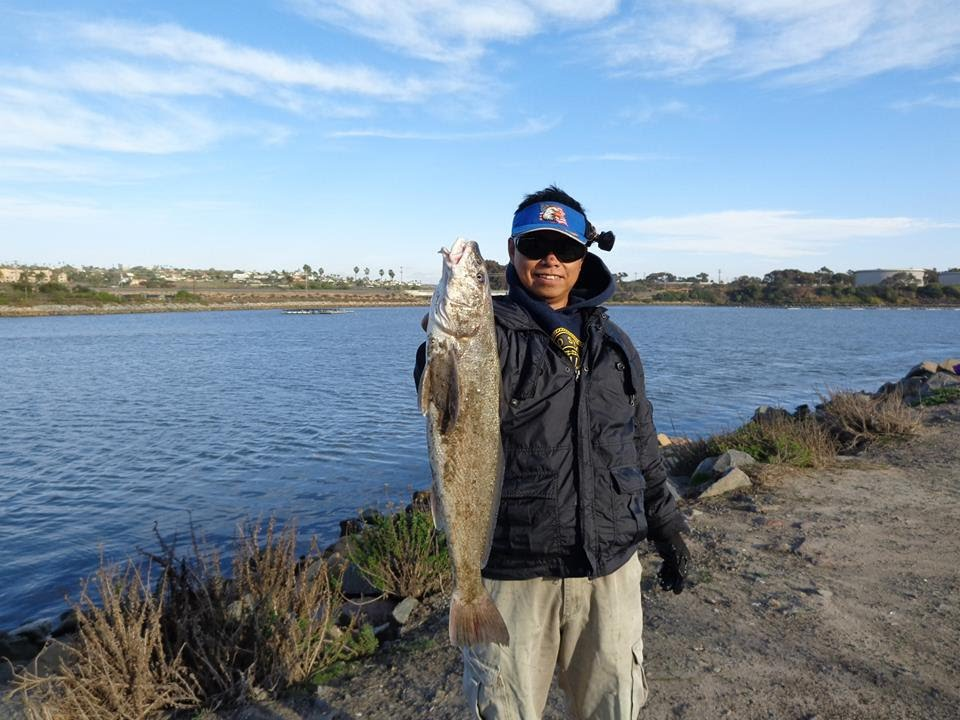 San diego fishing black corbina at agua hedionda lagoon for Fishing license san diego