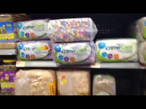 Guinea Pig Items I Buy At Walmart  ~Animal LuverTV~
