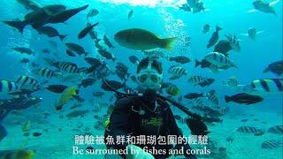 [Anytime for Taiwan] TAIWAN - READY, SET, GO!